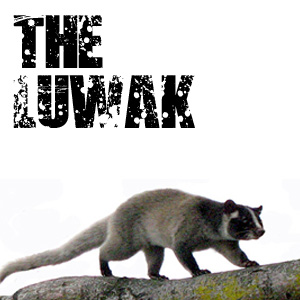 The Luwak